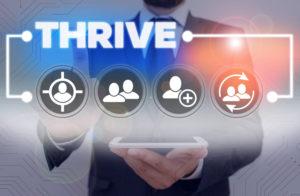 Thrive SEO Marketing Company Initiatives